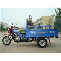 JF175cc 3 wheel motorcycle