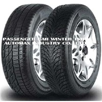 Passenger Car Winter Tyre ( 601/ 602)