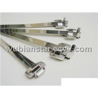 Stainless Steel Strapping with Buckles