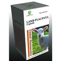 Lamb Placenta Capsule
