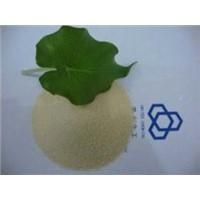 Bone Gelatin for Hard Capsule Manufacturing