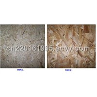OSB Board( Oriented Strand Board)