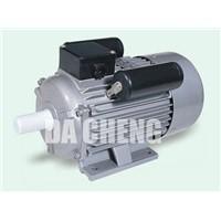 Electric Motor YC Series
