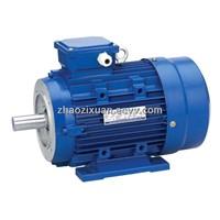 Aluminum Electric Motor