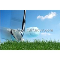Artificial Grass (25G22L11S5)