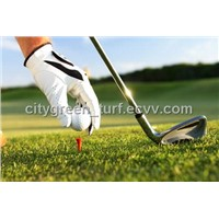 Artificial Turf for Sand-Filling Golf Green (25G22L11S5)