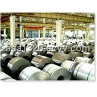 Aluminoum Coil