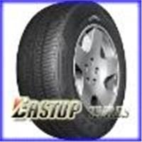 Car Tire (195/70R14)