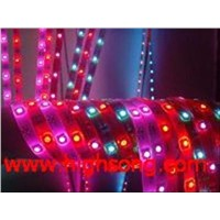 LED Rope Lights RGB Colourful (HX-F3528Y300N-12-01)