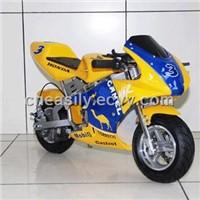 NE300 (E-300W Pocket Bike)