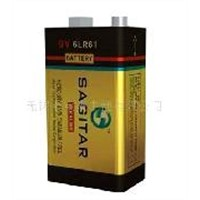 Alkaline Battery 9V