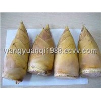 Canned Bamboo Shoot