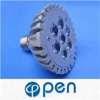 LED Spot Lamp (PAR30-2)