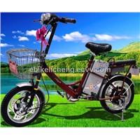 Electric Lead-Acid Bike