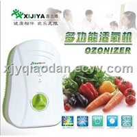 Fruits and Vegetables Disinfection Machine