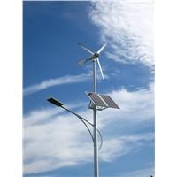 Wind Solar Hybrid Street Light (HS-2)
