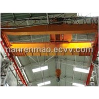 Workhshop Bridge Crane
