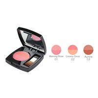 Shining Charming Two-Color Blush 4G