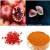 Pomegranate Seed Extract