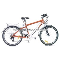 Mountain Electric Bicycle (JSL-TDH038XN)