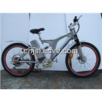 Steel Mountain E-Bike (JSL-TDH038AE)