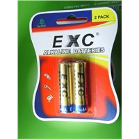 Dry Battery Cell (AA /LR6) with MSDS,SGS,ROHS,CE
