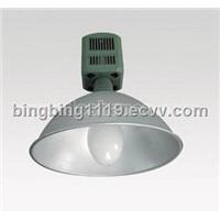 Pendant Lamps (DEL-P366)