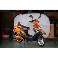 CE 350W E-bike (ZS350)