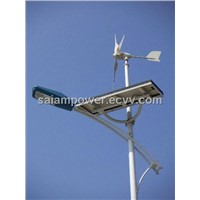 Wind Solar Light - 300W