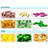 Best Weight Loss Diet Pills- Available for OEM & ODM