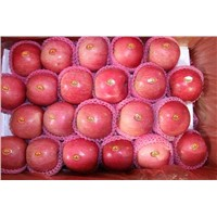 2012season fuji apple(fruitexporter at hotmail dot com)