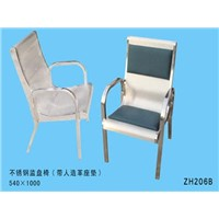 Stainless Steel Chair (ZH206B)