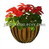 Wall Basket Planter With Coco Liner