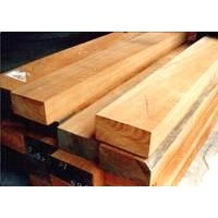 Quality african timber logs available