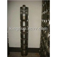 8 Inch Deep Well Submersible Pump (stainless steel)