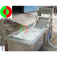 Bubble automatic vegetable washing machine   QX-22