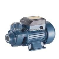 Peripheral Pump (QB-60)