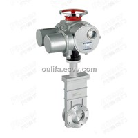 Electric High Vacuum Gate Valve