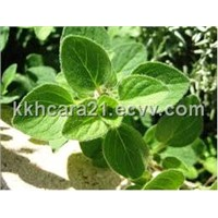 Oregano leaf extract