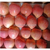 red fuji apples in Guanghe company
