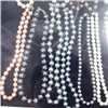 Shell Pearl Loose Beads Necklace (E512)