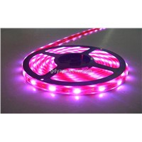 LED Flexible Strip Light & Flexible Light