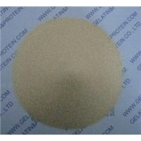 Bone Gelatin for Hard Capsule Manufacturing (GPPG10-089)