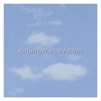 Blue Sky Printing Aluminum Ceiling