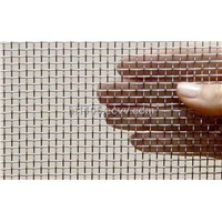 Plain Weave Stainless Steel Square Mesh