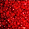 Lingonberry Anthocyanin