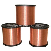 CCS (Copper Clad Steel Wire)