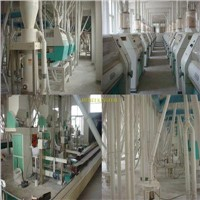 floor style 100ton/24h complete wheat flour mill machine