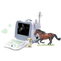 Digital Vet Ultrasound Scanner (BW530V)