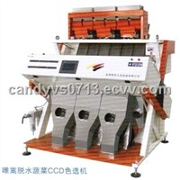 Color Sorter for Dehydrated Vegetables